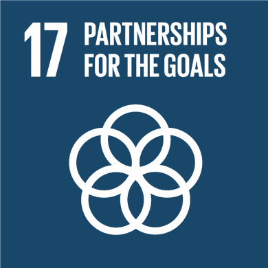 Goal 17: Revitalize the global partnership for sustainable development Image