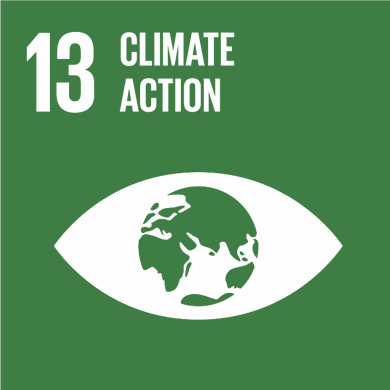 Goal 13: Take urgent action to combat climate change and its impacts Image